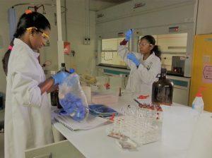 Hovid R&D Lab